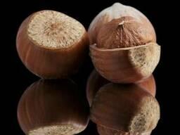 Фундук (Лесной орех, Hazelnuts) - фото 3