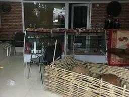 Продается коммерческая площадь в Батуми у парка 6 мая - фото 3