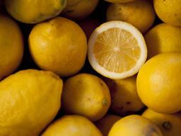 Лимоны из Грузии (Гурия)