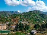 Продажа земельного участка в Батуми - фото 3