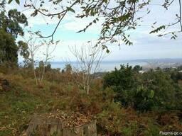 Срочно продаётся Земельный участок в Цихисдзири