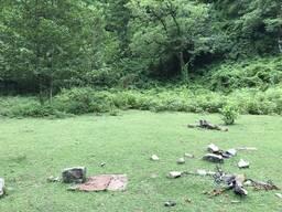 Срочно продаётся земельный участок 6000 кв. в национальном парке Mtirala,26 км. от Батуми.