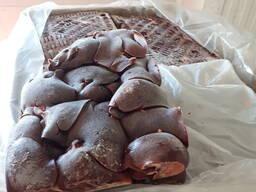 Свиные сердца, легкое, язык, печень, кишки не калиброванные - photo 1